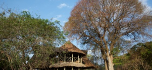 October School Holidays at Katavi Wildlife Camp